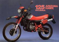 Gilera 125 Arizona Hawk
